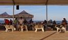 I Encontre Mostiner de la Comunitat Valenciana 2014_14