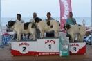 I Encontre Mostiner de la Comunitat Valenciana 2014_4