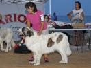 I Encontre Mostiner de la Comunitat Valenciana 2014_5