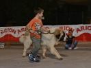 II Concurso Monográfico de Mallorca: Presentadores Infantiles