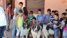 Charla en colegio Ciudad Rodrigo_1