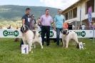 X TOPAKETA 2014 Alsasua (Navarra)_17