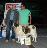 XI Topaketa: Concurso Monográfico del Mastín del Pirineo_20