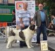 XI Topaketa: Concurso Monográfico del Mastín del Pirineo_27