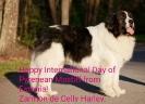 12-Octubre-2016 Día Internacional del Mastín del Pirineo_48