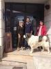 Visita guiada al museo e la trashumancia de Guadalaviar_1